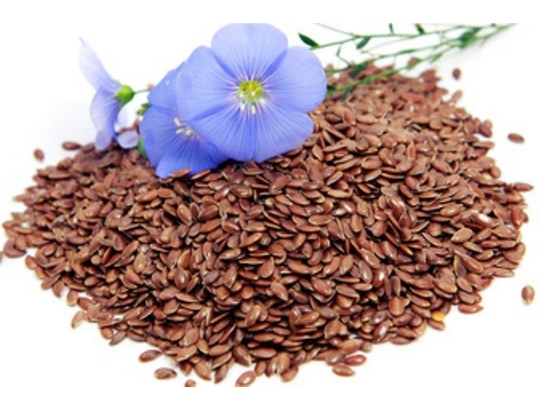 Linseed or flax Plant - Herbal Remedies for Arthritis Pain and Swelling