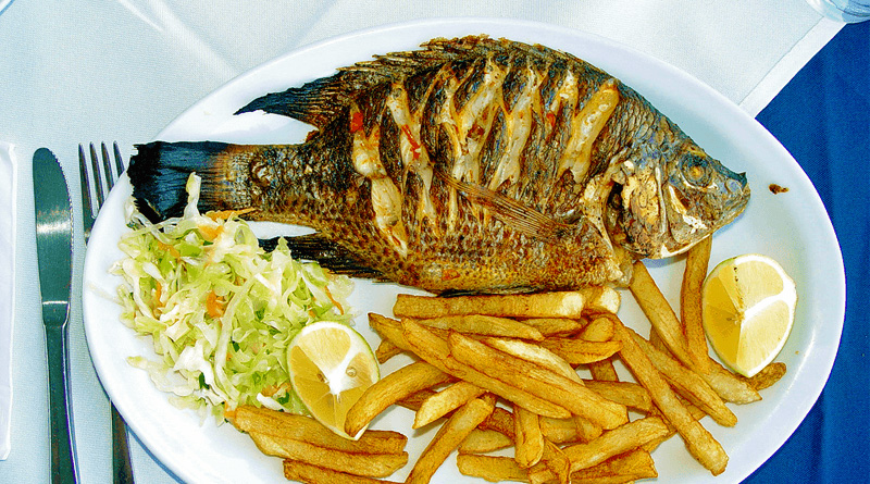 Health Benefits of Eating Fish Regularly