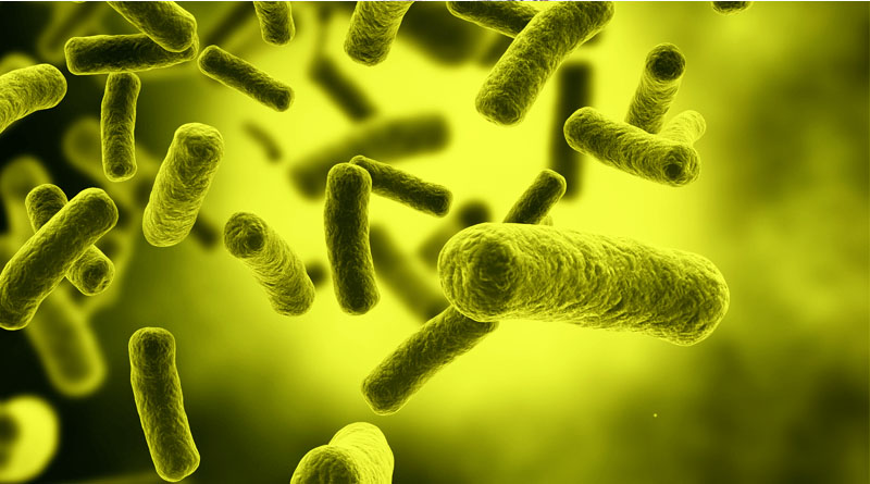 Diseases Caused by Bacteria Causes, Symptoms and Vaccination
