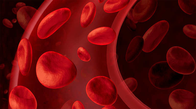 10 Easy Tips to Improve Blood Circulation