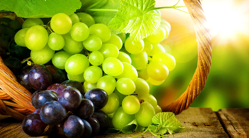 Protect Your Body by Eating Grapes Daily