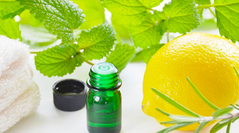The Benefits of Mint to Cleanse Lungs
