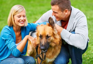 Benefits of having pets for our health
